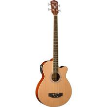 워시번 어쿠스틱 베이스 기타 AB5K - 베이스기타렌탈, 베이스기타대여