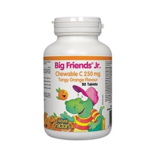Natural Factors 내추럴 팩터스 - Big Friends Vitamin C - Tangy Orange (빅프랜드 비타민C - 오렌지 - 90chews