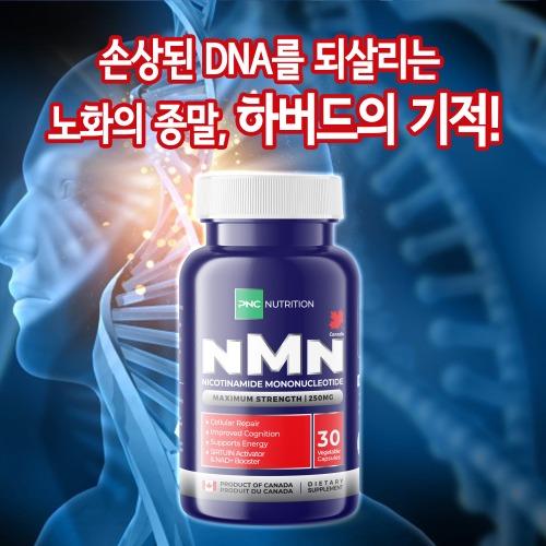PNC NMN 250mg ★ 손상된DNA를 되살리는 노화의 종말 기적! - 30캡슐