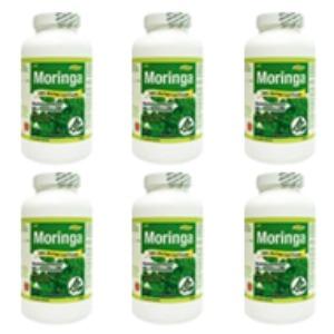 모링가(Moringa) - 6병세트