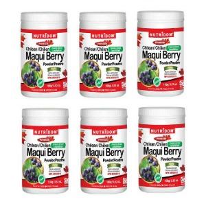(뉴트리돔) 마키베리 마퀴베리 파우더 Maqui Berry Powder 100g 6병