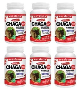 [6병세트](뉴트리돔) 차가버섯 20배 고농축 분말 캡슐형 500mg 120정(Nutridom Chaga 20X)