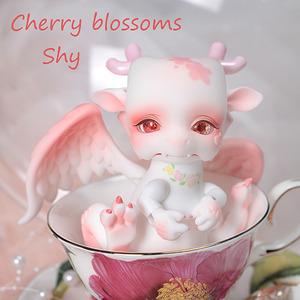 Cherry blossoms editon Shy