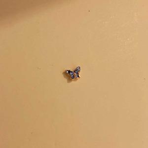 나비 피어싱