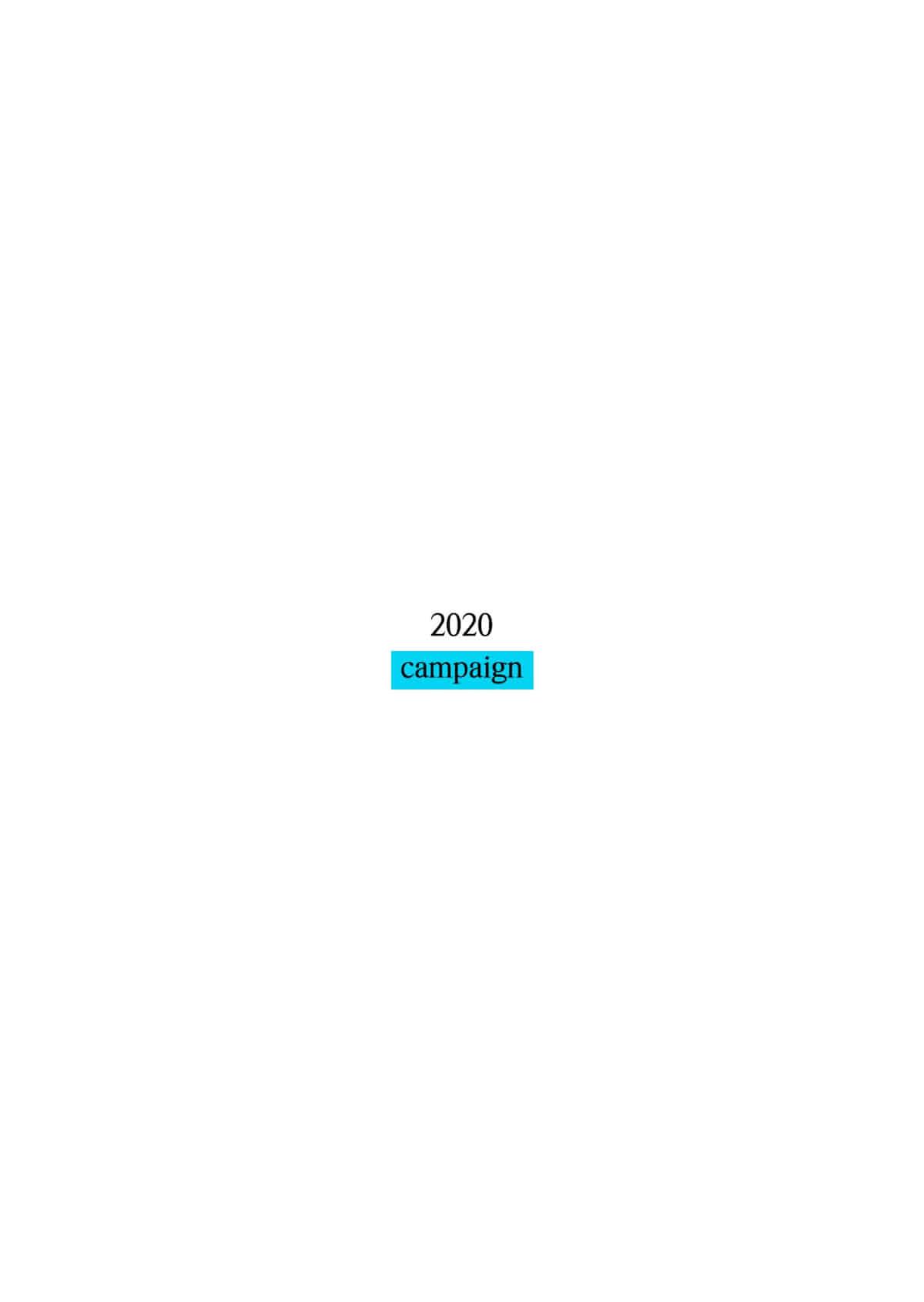 2020campaign