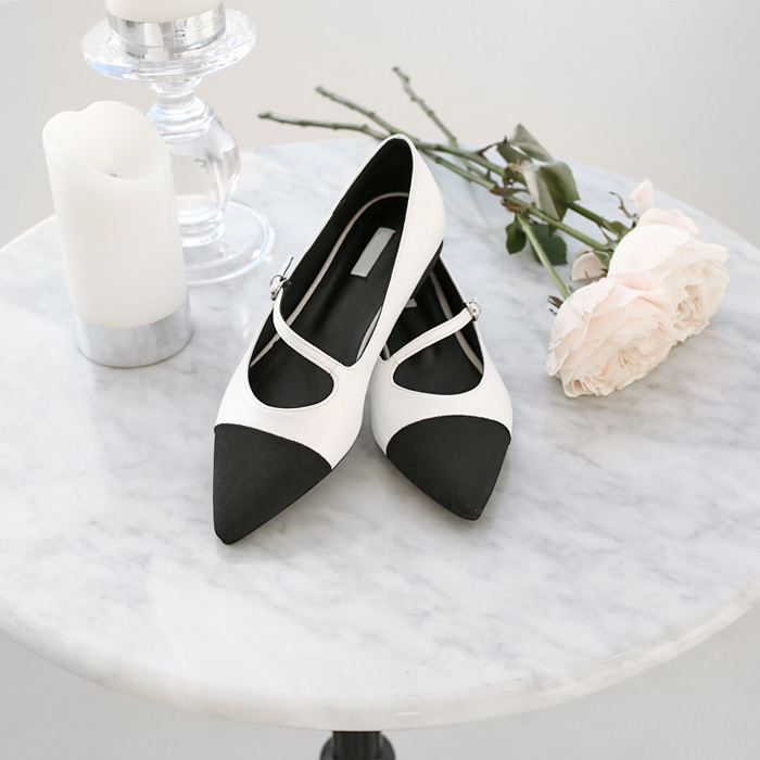 Pointed Toe Asymmetrical Strap Flats