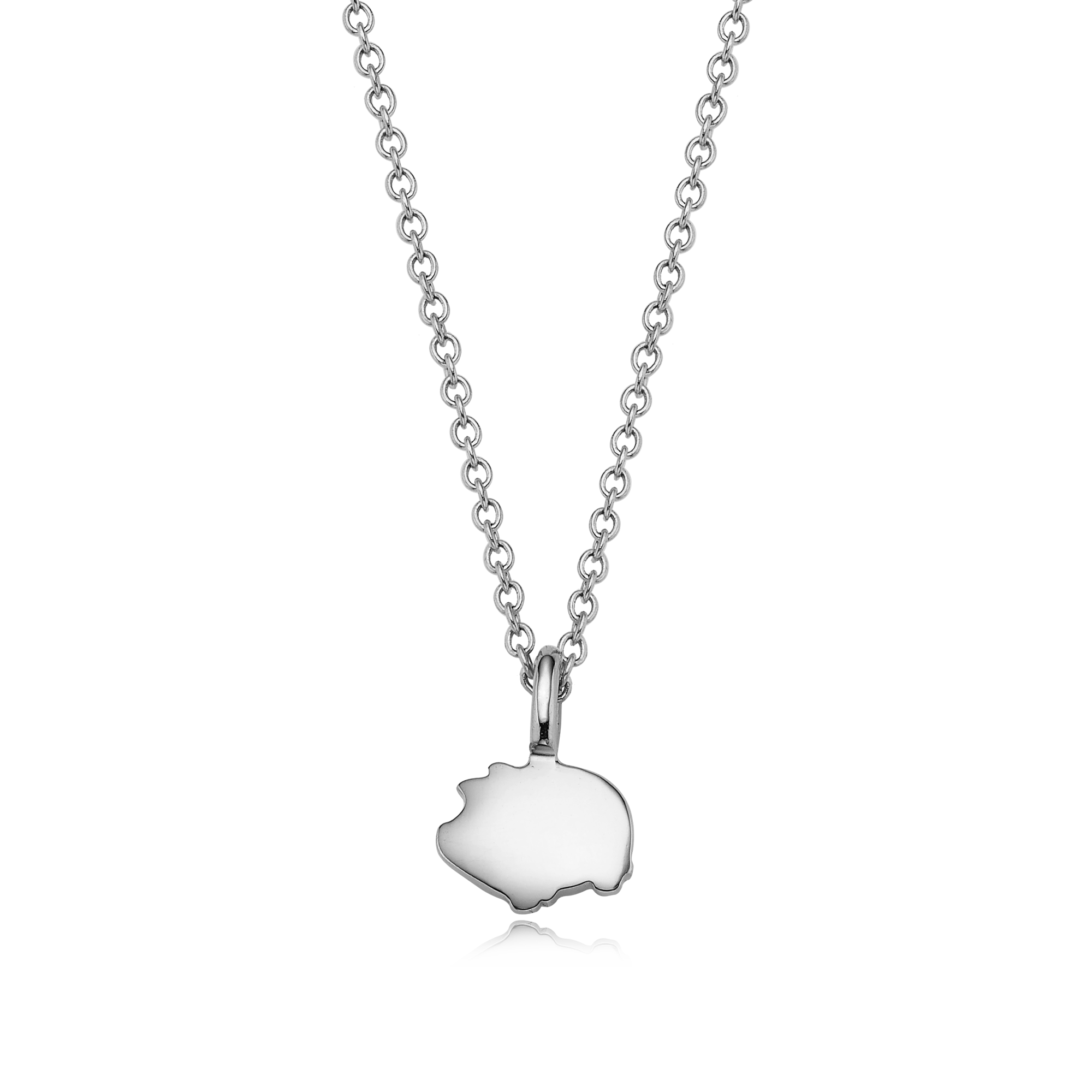 Silver mini zodiac zodiac - my guardian animal necklace can be engraved