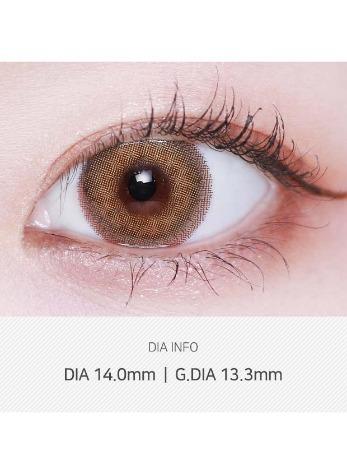 Silhouette 1Day Olive Brown (10pcs) 1Day G.DIA 13.3mmLENSVERYLENSPOP