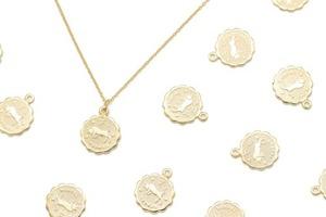 Zodiac Coin Charm