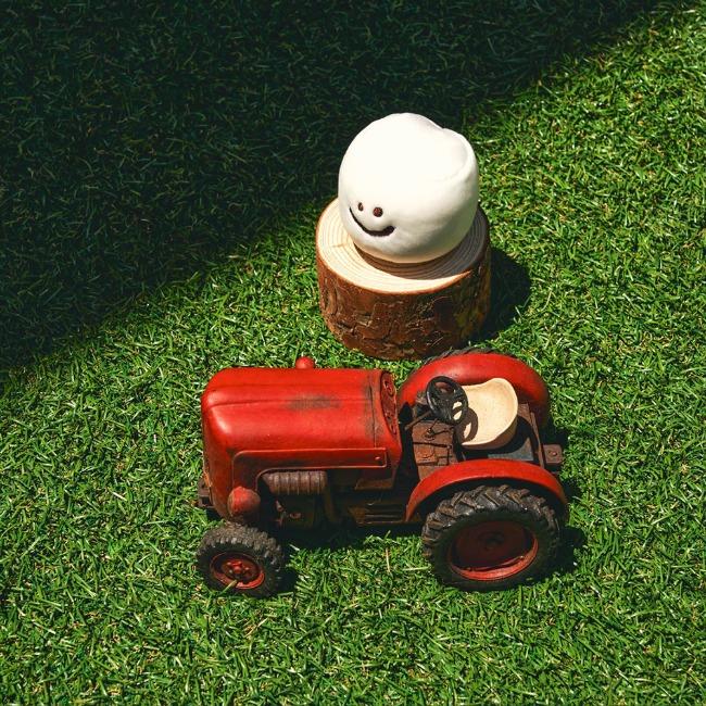 [다이노탱] Mini Marsh on the field_Plush Doll