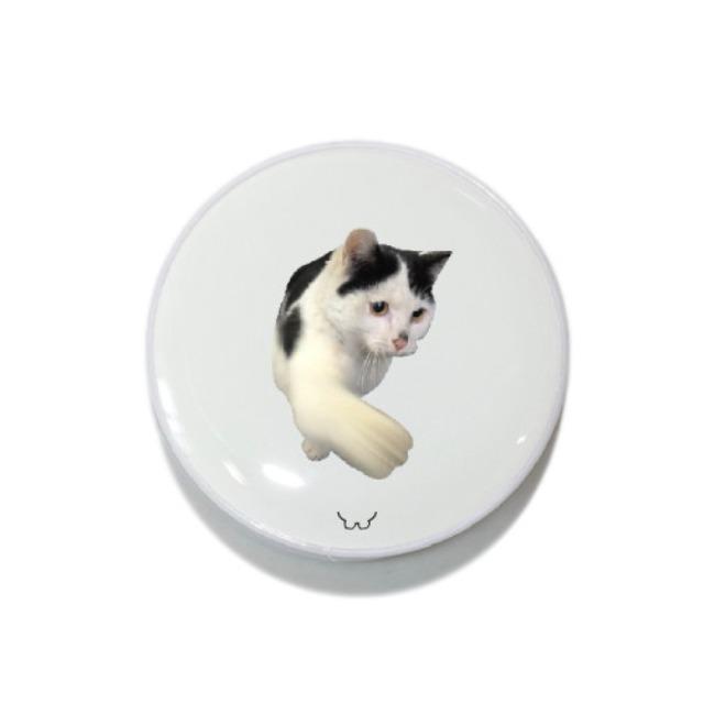 [길동물] 스마트톡_냥냥펀치 고양이