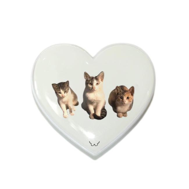 [길동물] 스마트톡_사랑, 눈빛, 야옹 고양이