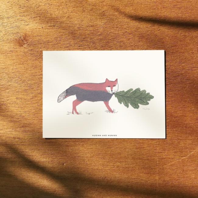 [후긴앤무닌] Tibet fox