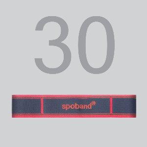 스포밴드 30 (spoband 30)