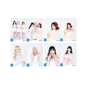 [vol.8] 핑크판타지SHY '신데렐라' 8매 세트