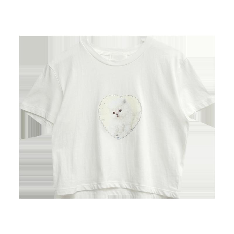 Kitten Print Cropped T-Shirt