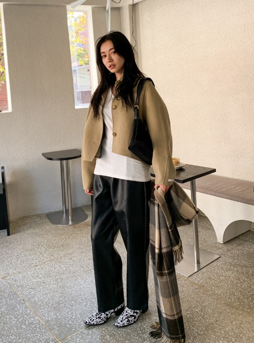 Pleated Loose Fit Faux Leather Pants
