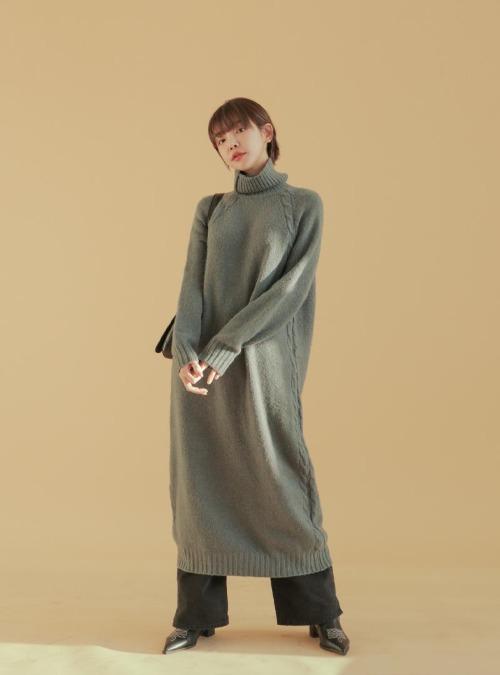 Raglan Sleeve Long Turtleneck Dress