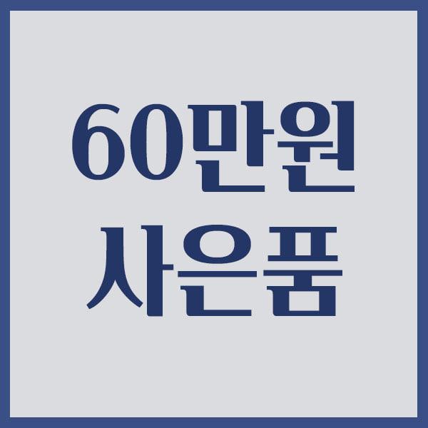 [60만원 이상]파버카스텔 엠비션 만년필