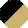 PROJEKT PRODUKT - FN-2 CGLD