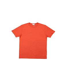 Short Sleeve Classic Crew Neck Burnt Orange