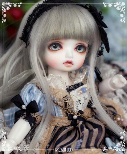 Monday's Child Limited Macaron - Alice Phenomena