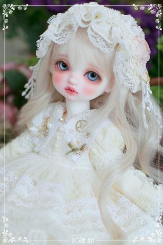 Limited : 밤비 - Sweet lemon zinnia