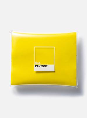 [PANTONE SALE] BoA  2019 SM ARTIST + PANTONE™ PVC POUCH