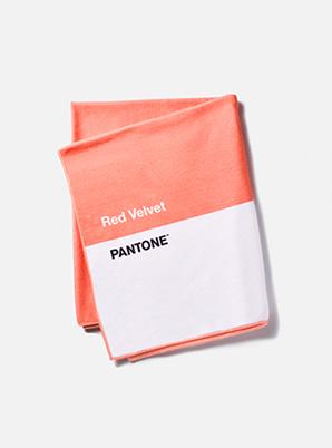 [PANTONE SALE] Red Velvet  2019 SM ARTIST + PANTONE™ SUMMER BLANKET