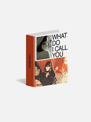 TAEYEON MINI COLLECT BOOK - What Do I Call You
