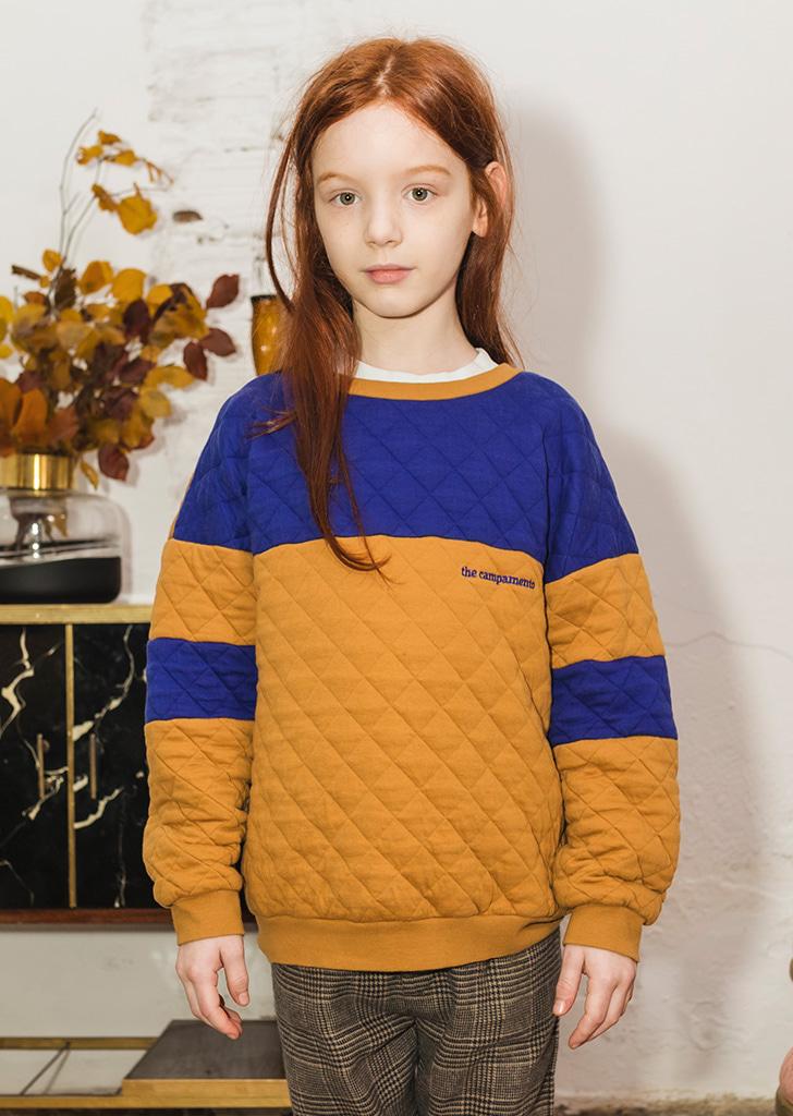 Sweatshirts(TC-AW21-25) - Brown/Blue