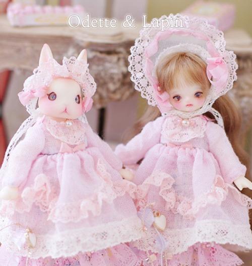 [Odette & Lapin] ver.Pink WonderLand