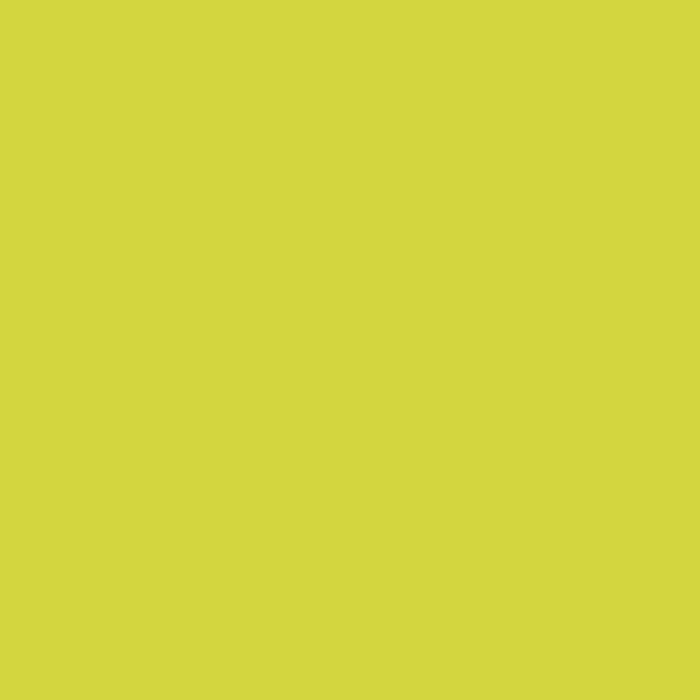 SEMI WIDE BASIC PANTS (GREEN)