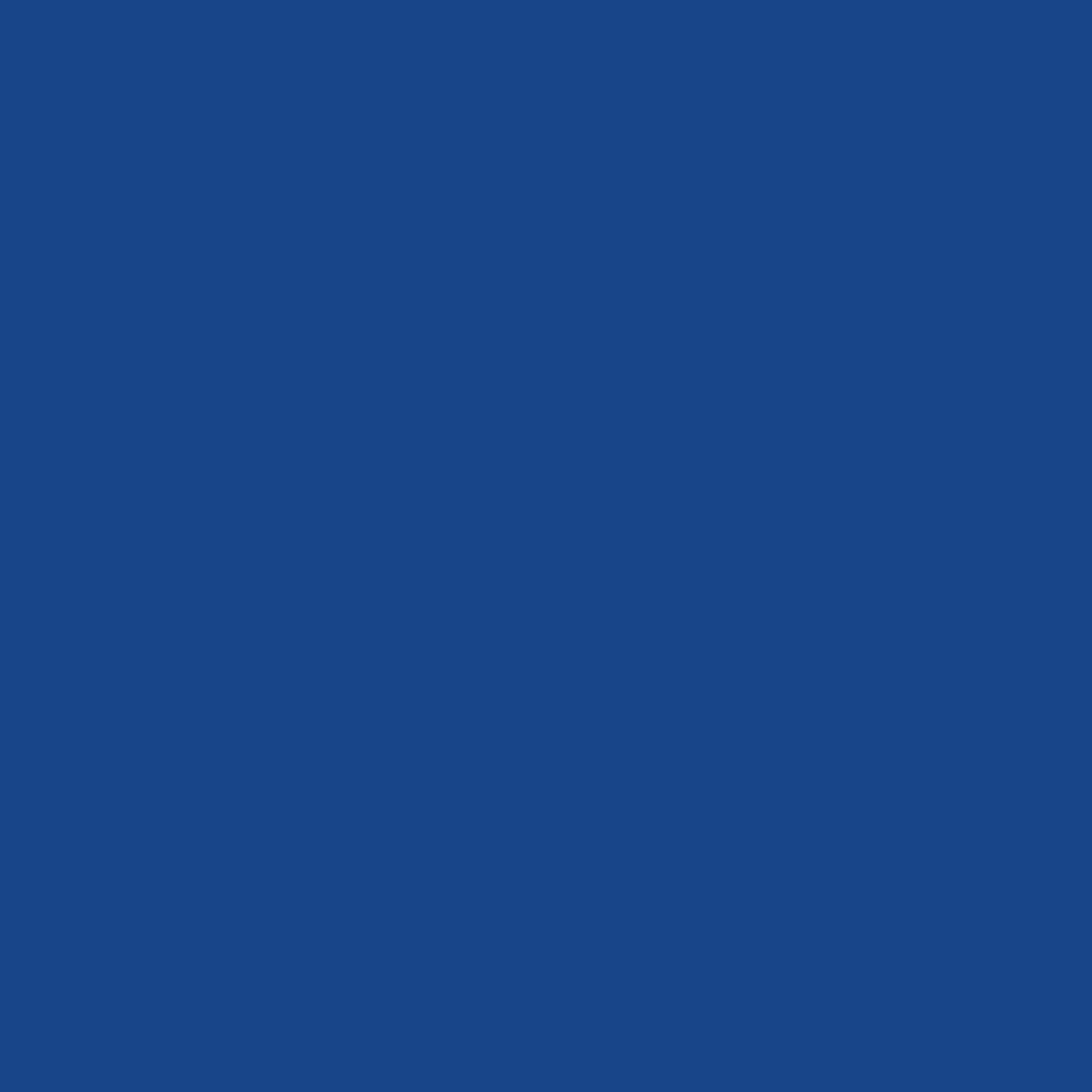 DESTROYED JEANS (BLUE)
