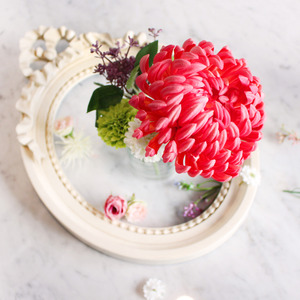 magenta chrysanthemum flower pen